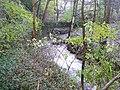 The River Ribble at Swan Bank, Cartworth (Holmfirth) - geograph.org.uk - 1603359.jpg