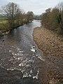 The River Wenning, Hornby, Lancashire - geograph.org.uk - 92009.jpg