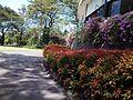The Taman Dayu Golf ^ Resort - panoramio.jpg