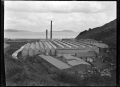 The Wellington Woollen Manufacturing Company factory in Petone ATLIB 274198.png