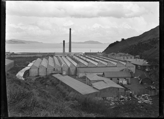 John Rutherford Blair - The Wellington Woollen Manufacturing Company factory in Petone circa 1900