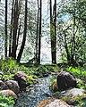 The beauty of Lake Naroch.jpg