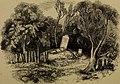 The home of the mutineers (1854) (14781137364).jpg