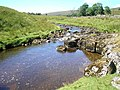 The infant Wharfe - geograph.org.uk - 216441.jpg
