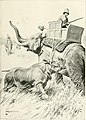 The sports of the world, with illustrations from drawings and photographs (1905) (14800325213).jpg