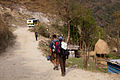 The trail from Besi Sahar to Bhulbule is a road, with many, many busses going by while we walked. (4514774801).jpg