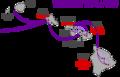 Theridion grallator colonization pattern (Hawaiian volcano populations).png