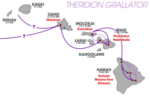 Peripatric speciation - A map of the Hawaiian archipelago showing the colonization routes of Theridion grallator superimposed. Purple lines indicate colonization occurring in conjunction with island age where light purple indicates backwards colonization. T. grallator is not present on Kauai or Niihau so colonization may have occurred from there, or the nearest continent.