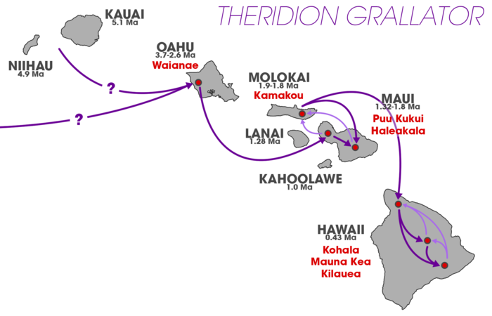 Theridion grallator colonization pattern (Hawaiian volcano populations).png