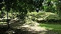 Tikal National Park-53.jpg