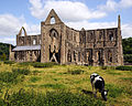 Tintern Abbey South.jpg