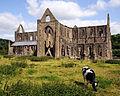 Tintern Abbey South.jpg