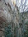 Torre de Santa Margarida P1080491.jpg
