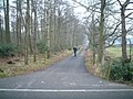 Track To Hespin Woods - geograph.org.uk - 145489.jpg