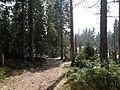 Trail near Sonnenkappe 01.jpg