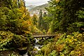 Triberg 2017 Autumn 6000 x 4000.jpg