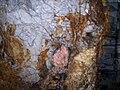 Triplite, Quartz, Albite - Morefield Mine, Winterham, Virginia, USA.jpg