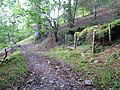 Tumbledown by the path - geograph.org.uk - 1498504.jpg