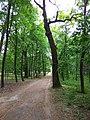 Turbiv park 145.jpg