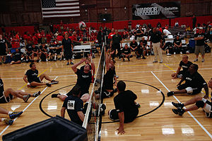 Sitting volleyball - Men's sitting volleyball match between a combined US Navy-Coast Guard team and the US Army
