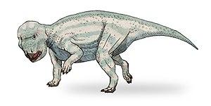 1992 in paleontology - Udanoceratops