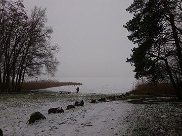 Ufer des Parteinsees.jpg