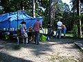 Ukraine. August 2012. Forest Vodice. - panoramio (4).jpg