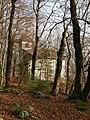 Unsere Liebe Frau im Walde BERNGAT 2.JPG