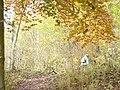 Unter den Dolomiten - geo.hlipp.de - 6523.jpg