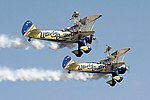 Utterly Butterly - RIAT 2006 (2392725496).jpg