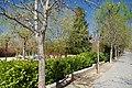 VIEW , ®'s - DiDi - RM - Ð 6K - ┼ , MADRID PARQUE de PEÑUELAS JARDÍN - panoramio (122).jpg