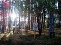 Valdaysky District, Novgorod Oblast, Russia - panoramio (2465).jpg