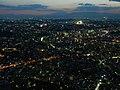 View from Yokohama Landmark Tower - panoramio.jpg