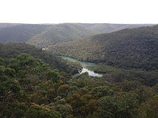 Mount Colah Suburb of Sydney, New South Wales, Australia