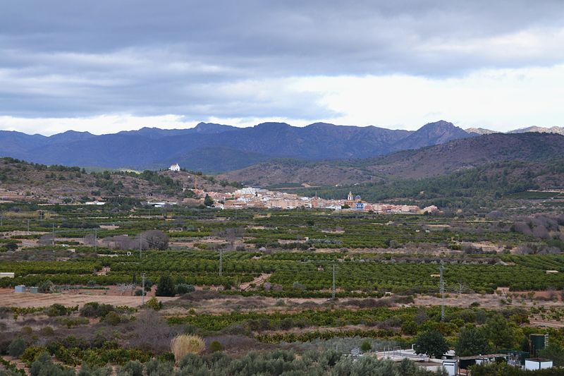 File:Vista d'Alfara de la Baronia des de Torres Torres. Camp de Morvedre.JPG