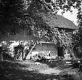 Vrhhlevna hiša št. 3 v Dobu 1950.jpg