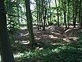 Wahnenbusch1.jpg