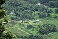 Waipio Valley, Honokaa (504267) (22765775084).jpg