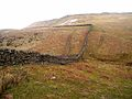Wall at Clint Quarries - geograph.org.uk - 1214918.jpg