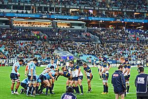 Rugby union in New South Wales - Waratahs vs Brumbies at ANZ Stadium, 2012.