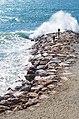 Waves (260100467).jpeg