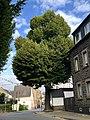 Wegekapelle in Kettig, Breite Straße Ecke Kärlicher Straße I, Sicht aus der Entfernung.jpg