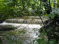 Weir in Borsdane Woods - geograph.org.uk - 482503.jpg