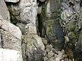 Wejście do groty - panoramio.jpg