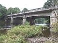 Western Avenue bridge over the Taff, looking upstream - geograph.org.uk - 938284.jpg