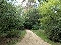 Western path. - Elisabeth Park, Gödöllő.JPG
