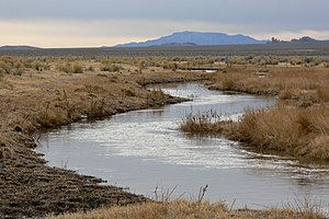 White River (Nevada) - The White River running through Murphy Meadows near Sunnyside