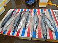 Wholesale fish market at Haikou New Port - 13.jpg