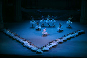 """Corps de ballet - In this scene from Swan Lake, the corps de ballet is forming a """"V"""" at the front of the stage. They are directing attention to the principal dancer in the spotlight. The dancers behind her are also corps de ballet and form a backdrop."""