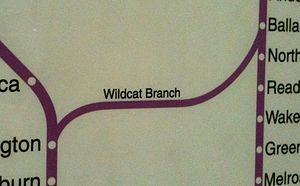 Wildcat Branch - The Wildcat Branch on a circa-2007 MBTA map at Back Bay